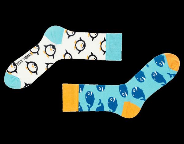 Mismatched Socken Alboa Sammy Icon